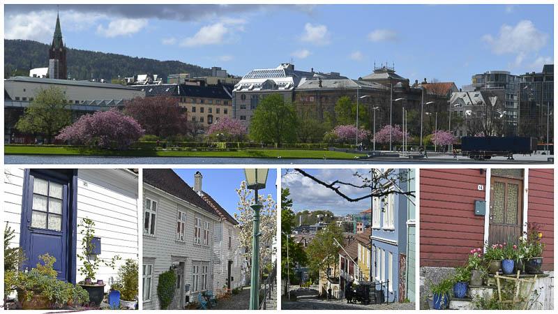 Vieux Bergen