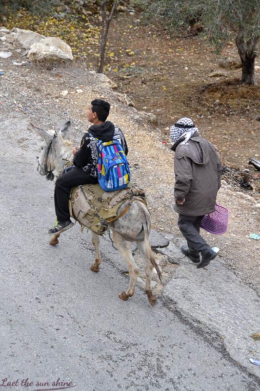 L'âne, le fermier et son fils